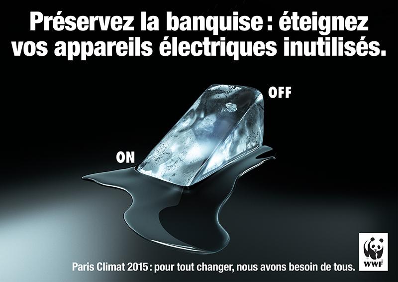 Affiche-WWF